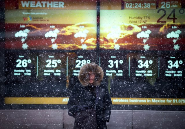 A woman stands in falling snow in front of an electronic sign displaying the weather forecast in Times Square in New York, January 26, 2015. (Photo by Mike Segar/Reuters)
