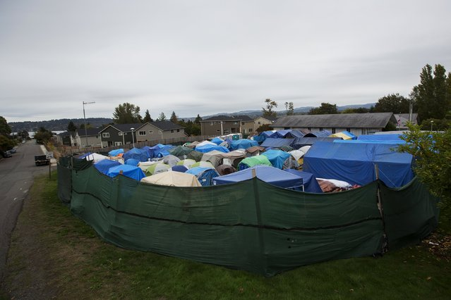 Tents stand at SHARE/WHEEL Tent City 3 outside of Seattle, Washington October 12, 2015. (Photo by Shannon Stapleton/Reuters)