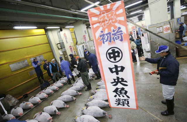 A prospective buyer, right, makes a hand signal during the first frozen tuna auction of the year at Tsukiji fish market  in Tokyo, Tuesday, January 5, 2016. (Photo by Eugene Hoshiko/AP Photo)