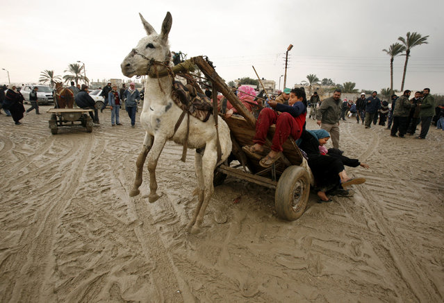 A Palestinian family falls from a donkey cart after they crossed a breach on the border wall between the Gaza Strip and Egypt January 27, 2008. (Photo by Suhaib Salem/Reuters)