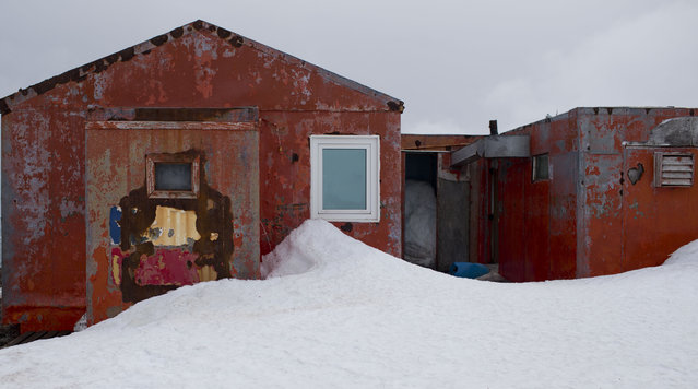 In this January 24, 2015 photo, snow surrounds buildings used by Chile's scientists on Robert Island, part of the South Shetland Islands archipelago in Antarctica. Temperatures can range from above zero in the South Shetlands and Antarctic Peninsula to the unbearable frozen lands near the South Pole. (Photo by Natacha Pisarenko/AP Photo)