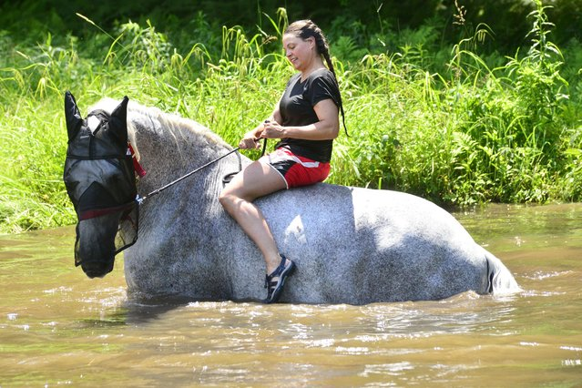 Lisa Tyler, owner of Forever Dream Drafts, in Vernon, Vt., walks her horse into the water to cool down on Tuesday, June 29, 2021. (Photo by Kristopher Radder/AP Photo)