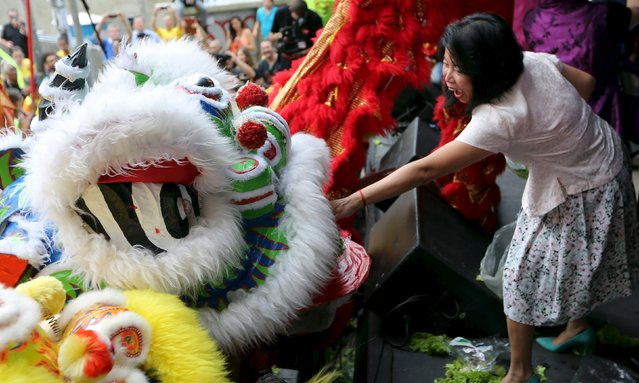 A member of the Chinese community offers lettuce to a lion during the celebrations to mark the Chinese Lunar New Year, which welcomes the Year of the Monkey, in Sao Paulo, Brazil, February 13, 2016. (Photo by Paulo Whitaker/Reuters)