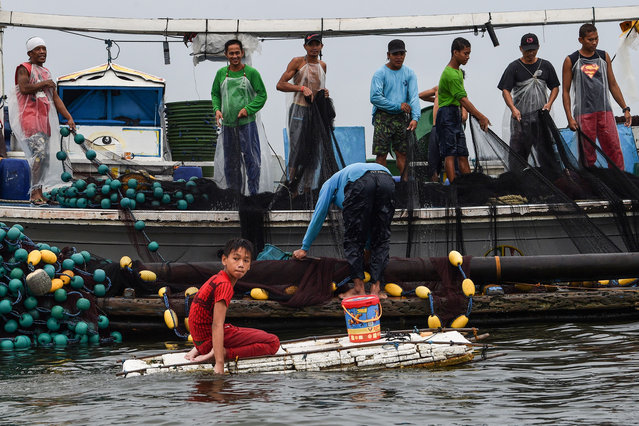 In this photo taken on March 16, 2019, 13-year-old Reymark Cavesirano onboard his borrowed makeshift craft made from styrofoam arrives at a fishing boat anchored at the mouth of Manila Bay off Navotas City in suburban Manila. (Photo by Ted Aljibe/AFP Photo)
