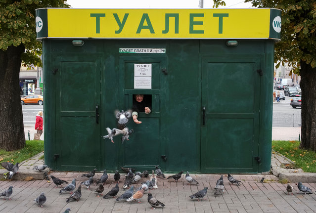 A cashier feeds pigeons and waits clients as she sells tickets to a public toilet in central Kiev, Ukraine on September 27, 2019. (Photo by Gleb Garanich/Reuters)