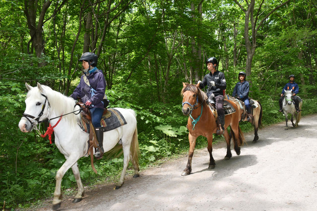 Rescuers on horseback search for a 7-year-old boy who is missing in a Japanese forest in Nanae town, on Hokkaido, the northernmost of Japan's four main islands Monday, May 30, 2016. He has been missing since late Saturday afternoon after his parents reportedly made him get out of the car as punishment. (Photo by Ichinoshin Matsuhashi/Kyodo News via AP Photo)