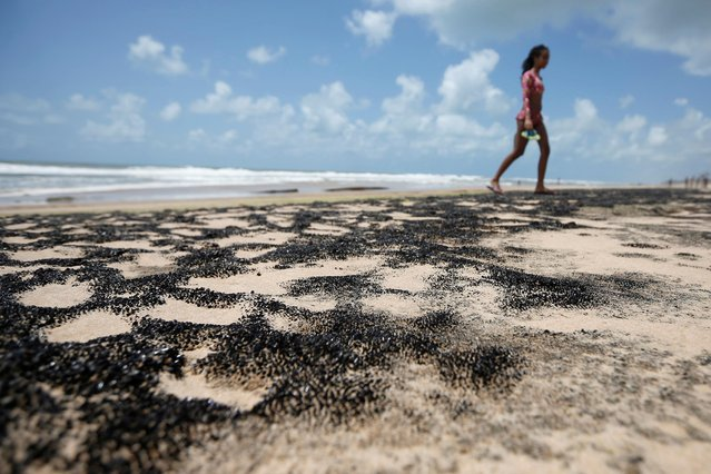 """An oil spill is seen on """"Sitio do Conde"""" beach in Conde, Bahia state, Brazil on October 12, 2019. (Photo by Adriano Machado/Reuters)"""