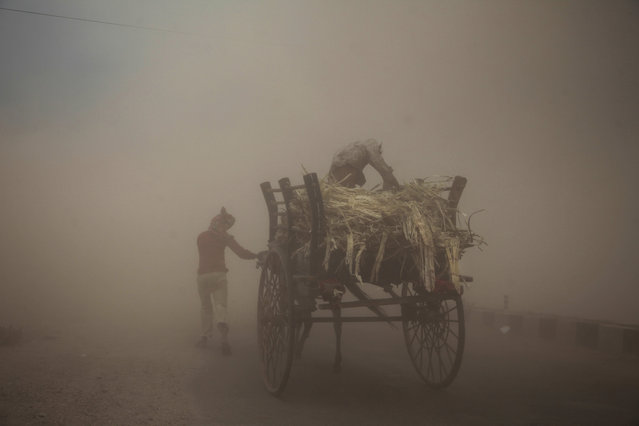 Two men with a horse cart try to make their way during a powerful dust storm in Jammu, India, Monday, June 16, 2014. (Photo by Channi Anand/AP Photo)