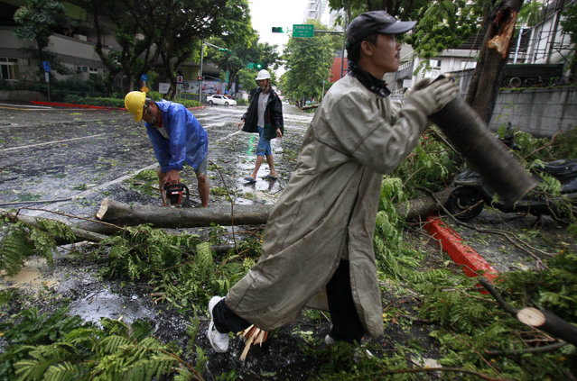 A city maintenance crew member removes fallen trees from a main road as Typhoon Matmo passes by Taipei, Taiwan, Wednesday, July 23, 2014. The eye of Typhoon Matmo made landfall in eastern Taiwan early Wednesday bringing with it heavy rains and winds with gusts over 140 kilometers (85 miles) per hour. (Photo by Wally Santana/AP Photo)
