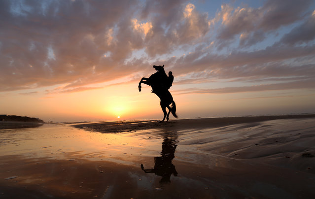 A Palestinians rides a horse on Gaza beach as the sun sets in Gaza City, Saturday, December 28, 2013. (Photo by Hatem Moussa/AP Photo)