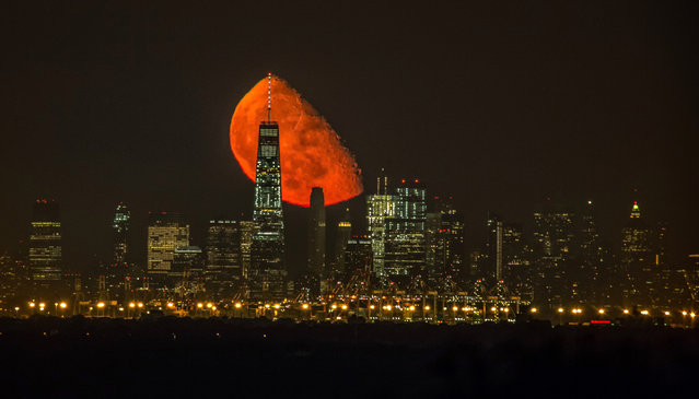 An incredible moon rise behind the World Trade Center, Manhattan, New York on August 23, 2016. The breath-taking photo was taken by photographer Jennifer Khordi. She said: it was just absolutely amazing to see this. (Photo by Jennifer Khordi/Caters News Agency)