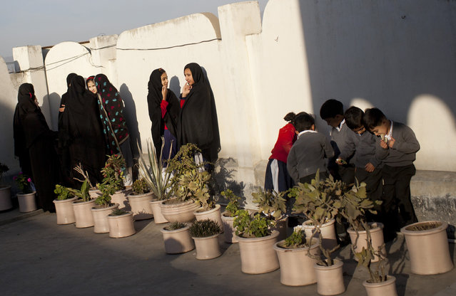 In this Thursday, November 15, 2012 file photo, Pakistani school children gather at the patio of the Khushal School for Girls in Mingora, Swat Valley, Pakistan. (Photo by Anja Niedringhaus/AP Photo)