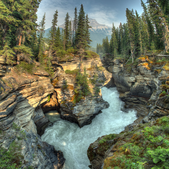 """Athabasca Canyon"". Athabasca Canyon taken in Jasper National Park. Photo location: Alberta, Canada. (Photo and caption by Candice Gordon/National Geographic Photo Contest)"
