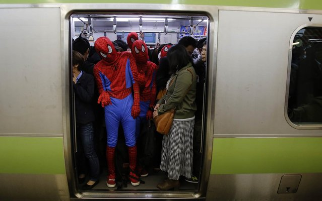 Participants, wearing Spiderman costumes, ride on a train after Halloween night in Tokyo's Shibuya district November 1, 2014. Thousands of costumed revelers descended on Shibuya crossing in downtown Tokyo on Friday to celebrate Halloween in what has in recent years become a incredibly popular Japanese past time. (Photo by Yuya Shino/Reuters)