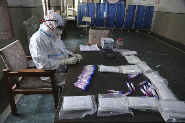A health worker arranges swab samples of people to test for COVID-19 at a government hospital in Jammu, India, Thursday, October 29, 2020. India's confirmed coronavirus caseload surpassed 8 million on Thursday with daily infections dipping to the lowest level this week, as concerns grew over a major Hindu festival season and winter setting in. (Photo by Channi Anand/AP Photo)