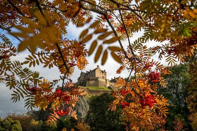 Edinburgh Castle is framed by trees displaying their autumn colours in Princes Street Gardens, Scotland on October 21, 2019. (Photo by Jane Barlow/PA Images via Getty Images)