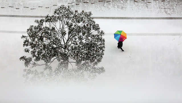 A pedestrian walks on a snow-covered street in Tancheng County, east China's Shandong Province, on January 4, 2018. (Photo by Zhang Chunlei/Xinhua/Barcroft Images)