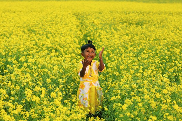 A girl plays in a mustard field in Munshiganj, Bangladesh on January 8, 2021. (Photo by Mohammad Ponir Hossain/Reuters)