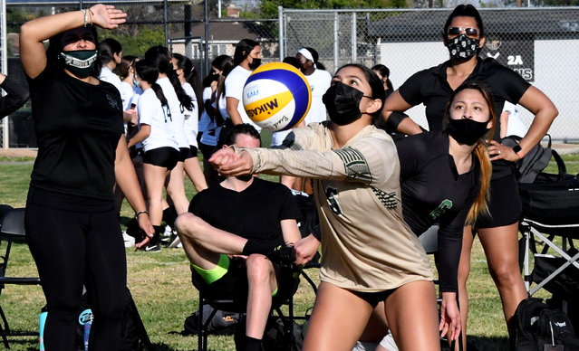 Jaida Zuniga #5 returns a volley against Northview during a girls volleyball match on grass as part of the newly formed Grass Valley League at Northview High School in West Covina on Thursday, March 4, 2021. South Hills defeated Northview (21-25), 25-13, 25-9, 25-12. (Photo by Keith Birmingham, Pasadena Star-News/SCNG)