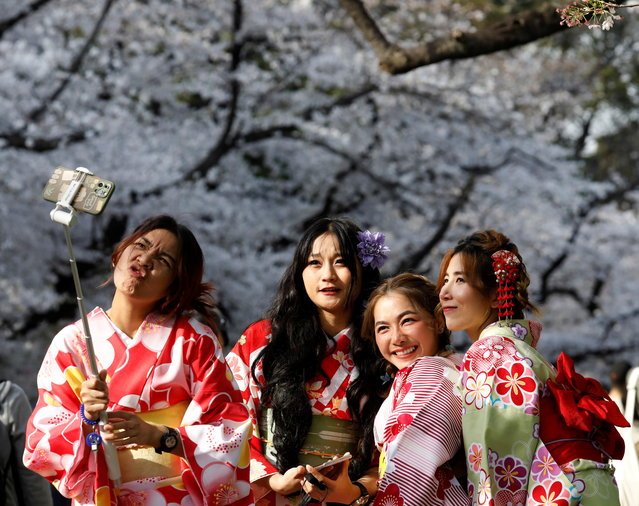 Kimono-clad women from Thailand take selfies among blooming cherry blossoms at Ueno Park in Tokyo, Japan, March 27, 2021. (Photo by Kim Kyung-Hoon/Reuters)