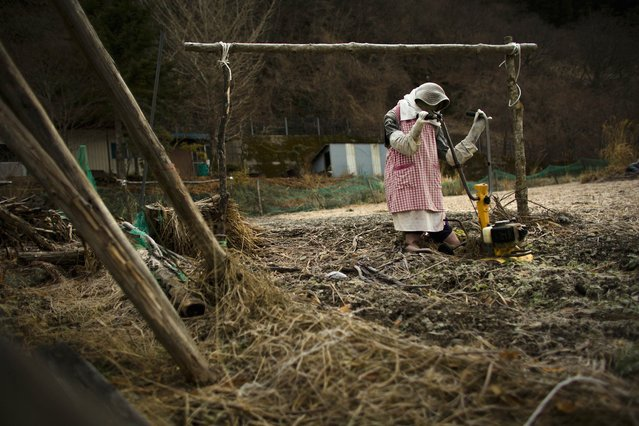 A scarecrow is arranged to look as if it is plowing a field in the village of Nagoro on Shikoku Island in southern Japan February 24, 2015. (Photo by Thomas Peter/Reuters)