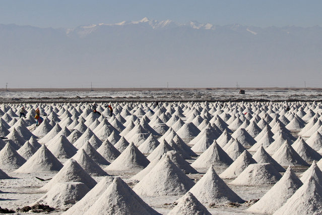 People work among piles of dried crude salt at a salt lake in Zhangye, Gansu province, China October 31, 2018. (Photo by Reuters/China Stringer Network)