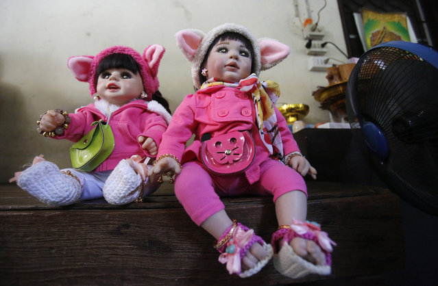 "In this Thursday, January 28, 2016 photo, ""child angel"" dolls sit on a chair in Bangkok, Thailand. (Photo by Sakchai Lalit/AP Photo)"