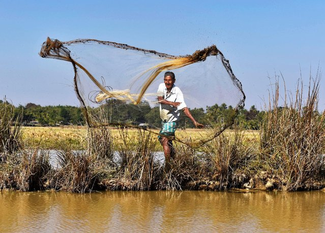 A fisherman casts his net in the waters of a pond in Morigaon district, in the northeastern state of Assam, India, December 16, 2016. (Photo by Anuwar Hazarika/Reuters)