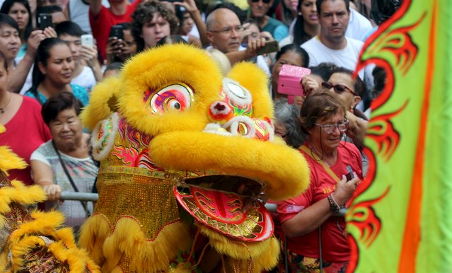 Members of the Chinese community perform a lion dance as they take part in celebrations to mark the Chinese Lunar New Year, which welcomes the Year of the Monkey, in Sao Paulo, Brazil, February 13, 2016. (Photo by Paulo Whitaker/Reuters)