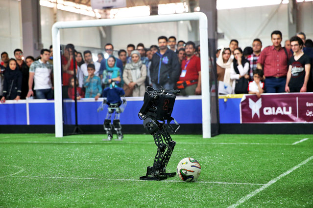 Humanoid robots play during a soccer match in Iran Open RoboCup 2015 robotics competition as spectators follow the match in Tehran, Iran, Thursday, April 9, 2015. Initiated in 1996 in Osaka, Japan, RoboCup is a shortened term for Robot Soccer World Cup but as it gained popularity, non-soccer robots such as rescue robots, mine sweeping robots, flying robots and robots for housekeeping purposes and industrial robots found their way in the tournament. (Photo by Ebrahim Noroozi/AP Photo)