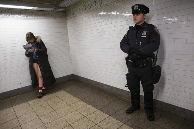 A woman reads during the annual No Pants Subway Ride in New York January 12, 2014. (Photo by Eric Thayer/Reuters)