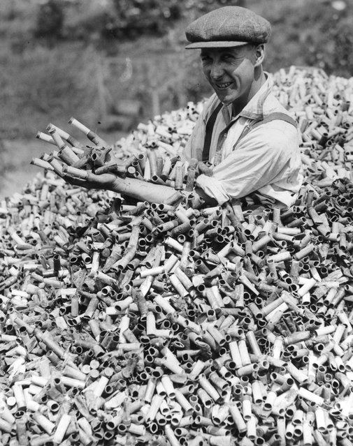 A man buried in spent cartridges in a dump in at the Gun Club in Crayford, Kent, which has been building up over five years. During the shooting season over 20,000 cartridges are fired a week. 25th May 1934. (Photo by Reg Speller/Fox Photos/Getty Images)