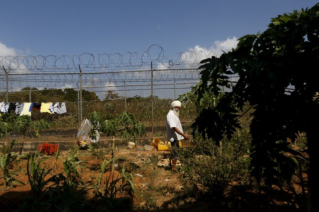 "Inmate Robert Maximiliam, a Polish-Canadian, stands at his allotment at the Pavilion No.6 assigned to foreigners at La Joya prison on the outskirts of Panama City, Panama February 5, 2016. Maximiliam said: ""I'm a healer. I use plants as a medicine to helps other. I'm here by mistake they accuse me of drug trafficking, but I'm innocent, someone put drugs in my bag at the airport"". (Photo by Carlos Jasso/Reuters)"