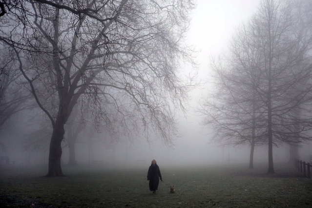 A woman walking her dog emerges from the fog on Parsons Green in London, Britain January 23, 2017. (Photo by Kevin Coombs/Reuters)