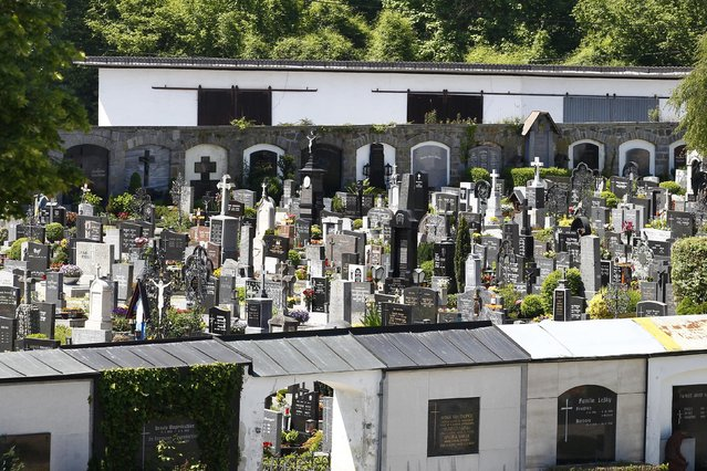 A cemetery is pictured in Schaerding, Upper Austria, May 19, 2014.  REUTERS/Michaela Rehle