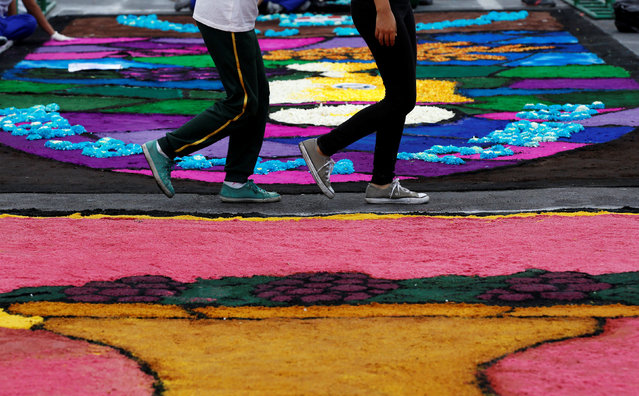 People walk by a sawdust and flower carpet during the feast of Corpus Christi in downtown Trujillo, Peru, May 26, 2016. (Photo by Mariana Bazo/Reuters)