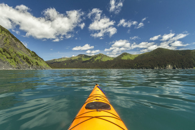 Daniel Fox kayaks in Pillar Bay, in June, 2014, in Afognak Island, Alaska. Driving in an open-roofed jeep is no longer the fashionable way to see wildlife – as this adventurer shows. (Photo by Daniel Fox/Barcroft Media)