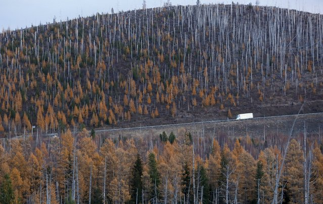 """A vehicle drives along the M54 """"Yenisei"""" highway during a snowfall in the Western Sayan mountains in Southern Siberia near an administrative border with Tuva region, Russia, October 6, 2015. (Photo by Ilya Naymushin/Reuters)"""