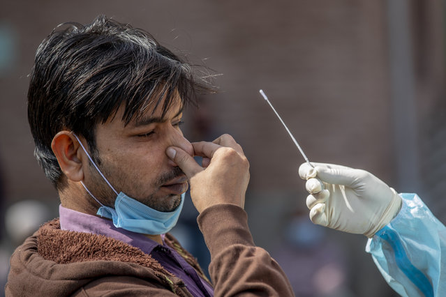 A Kashmiri man reacts as a health worker takes a nasal swab sample to test for COVID-19 in Srinagar, Indian-controlled Kashmir, Tuesday, October 6, 2020. India is the second worst-nation in terms of confirmed coronavirus caseload. (Photo by Dar Yasin/AP Photo)