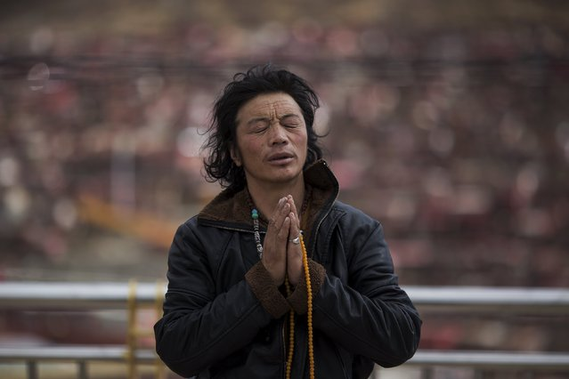 An ethnic Tibetan man prays at a monastery above the Larung Wuming Buddhist Institute, located some 3700 to 4000 metres above the sea level in remote Sertar county, Garze Tibetan Autonomous Prefecture, Sichuan province, China October 30, 2015. (Photo by Damir Sagolj/Reuters)