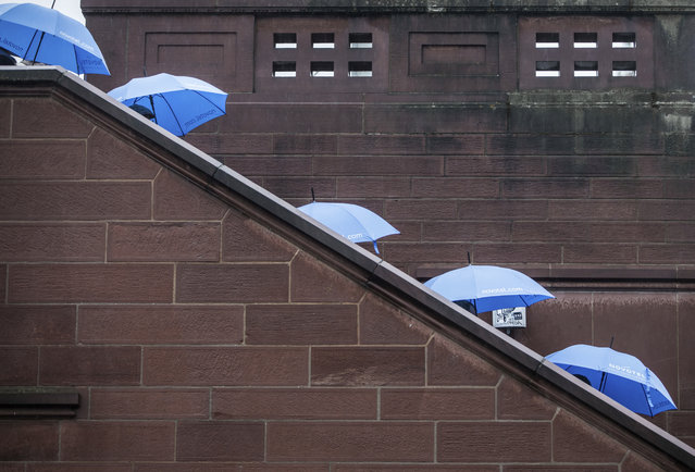 A group of tourists from Asia walks down the stairs of the Eiserner Steg bridge carrying blue umbrellas in Frankfurt/Main, Germany, Monday, December 11, 2017. (Photo by Frank Rumpenhorst/DPA via AP Photo)