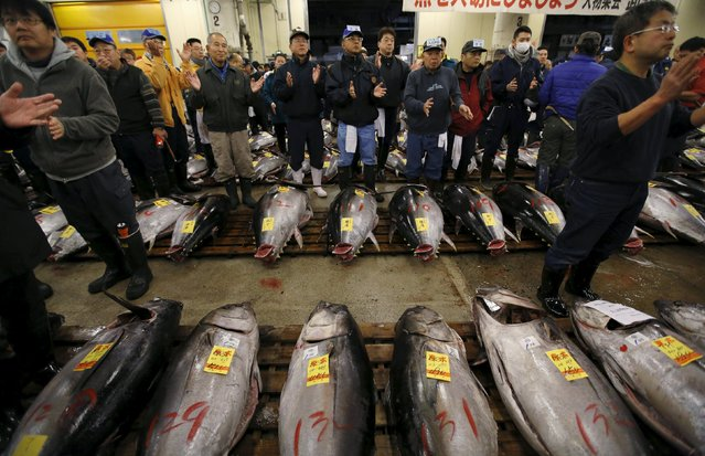 Wholesalers claps their hands before the New Year's auction for fresh tuna at the Tsukiji fish market  in Tokyo, Japan, January 5, 2016. (Photo by Toru Hanai/Reuters)