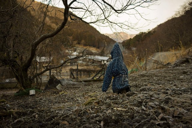 A scarecrow stands in a field overlooking the mountain village of Nagoro on Shikoku Island in southern Japan   February 24, 2015. (Photo by Thomas Peter/Reuters)