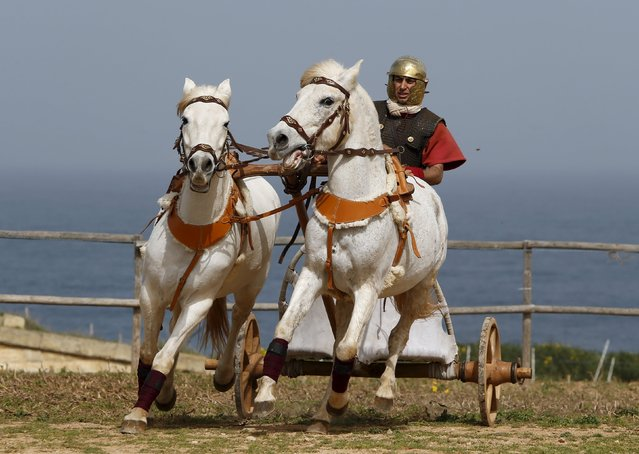 A member of the Fort Rinella Horse Troop of the Malta Heritage Trust rides a chariot during a display of ancient Roman army life at Fort Rinella in Kalkara, outside Valletta, March 22, 2015. (Photo by Darrin Zammit Lupi/Reuters)