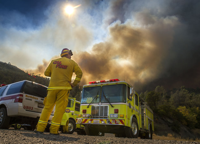 Dave Miinch, fire captain with South Lake County, watches a fire burn on the north side of U.S. Highway 20, Monday, August 3, 2015, in Yolo County, Calif. Cooler weather helped crews build a buffer Monday between a raging Northern California wildfire and some of the thousands of homes it threatened as it tore through drought-withered brush that hadn't burned in years. (Photo by Hector Amezcua/The Sacramento Bee via AP Photo)