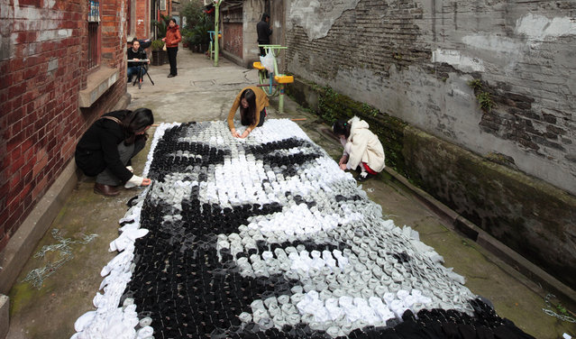 Huge Portrait Made Of 750 Pairs Of Socks