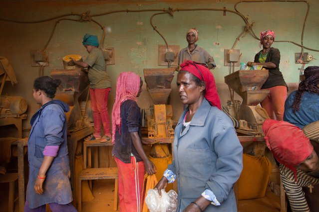 """""""In the red chilli powder factory of Asmara, women work in bad sanitary conditions"""", she says. """"They have lung problems, but jobs are difficult to find as the economy is at zero"""". (Photo by Stéphanie Buret/The Guardian)"""