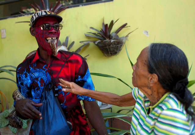 In this January 27, 2013 photo, snake handler Saintilus Resilus holds a snake with his teeth as he performs for money during the pre-Lenten Carnival season, near his home in Petionville, Haiti. Resilus has used snakes and other animals to earn a little money since at least 1974. (Photo by Dieu Nalio Chery/AP Photo/Matt Dayhoff)