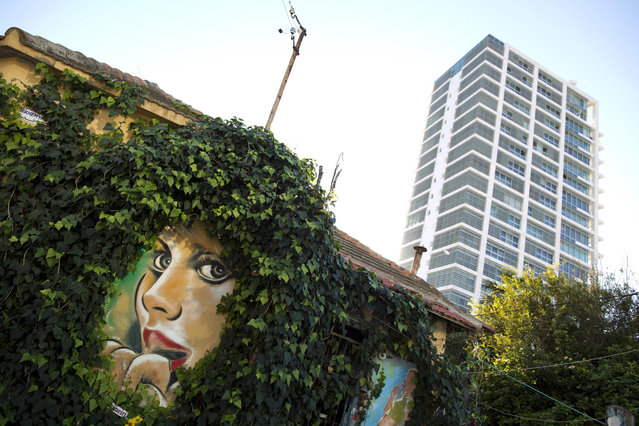 A mural painted by Israeli street  artist Rami Meiri  surrounded by creeper is seen at an old building in Tel Aviv, Israel, 09 December 2015. (Photo by Abir Sultan/EPA)
