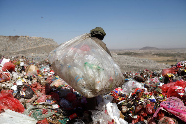 A boy carries recyclable items that he's collected at a rubbish dump site on the outskirts of Sanaa, Yemen November 16, 2016. (Photo by Mohamed al-Sayaghi/Reuters)